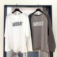 【MICA&DEAL/マイカアンドディール】ロゴラグランTシャツ