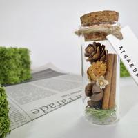 [ボトルフラワー] 木の実/Sサイズ