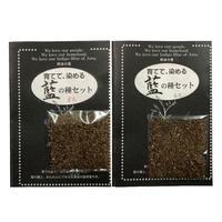 藍の種(白花・赤花) | Indigo seeds (white flower and pink flower)