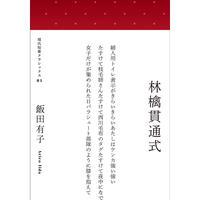 飯田有子『林檎貫通式』