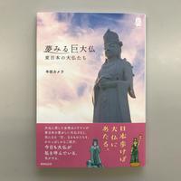 半田カメラ『夢みる巨大仏 東日本の大仏たち』
