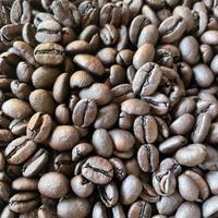 ディカフェ コロンビア|中深煎り|コーヒー豆150g