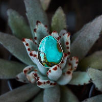 Mystery Turquoise Collection