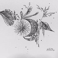 妖精の住む月