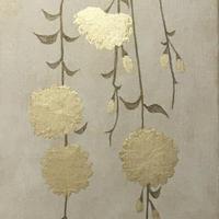 枝垂れ桜70