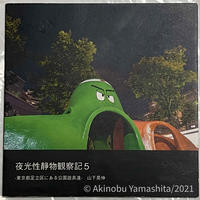 写真家・山下晃伸フォトブック「夜光性静物観察記5〜東京都足立区にある公園遊具達〜」