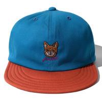 【Husse Matte】Chihuahua Cap(BlueGreen)