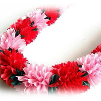Pink&Red Carnation Lei