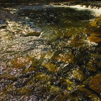Feeling of River #6
