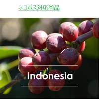 インドネシア オナンガンジャン 100g
