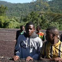 エチオピア サワナ農園 ナチュラル 200g