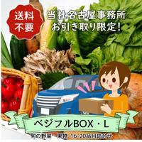★★名古屋事務所引取り限定★★【定期便】ベジフルBOX・L(お野菜てんこ盛り)