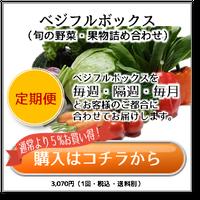 ベジフルボックス【定期便】