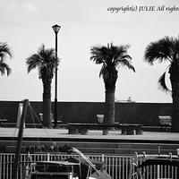 JULIE's Photo Monochrome-85