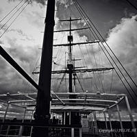 JULIE's Photo Monochrome-270