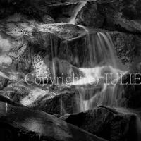 JULIE's Photo Monochrome-311  for web size