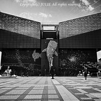 JULIE's Photo Monochrome-146