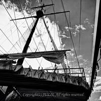 JULIE's Photo Monochrome-200