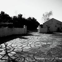 JULIE's Photo Monochrome-125