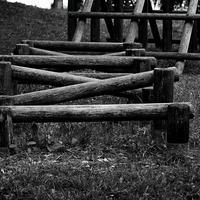 JULIE's Photo Monochrome-35