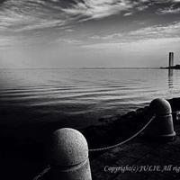 JULIE's Photo Monochrome-195