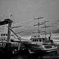 JULIE's Photo Monochrome-237