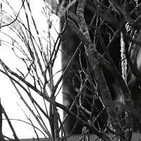 JULIE's Photo Monochrome-31