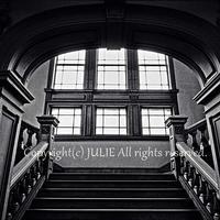 JULIE's Photo Monochrome- 308 for web size