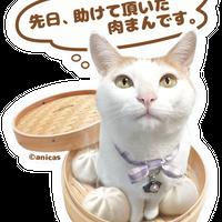 【購入不要】<ポーチ+小むぎ購入特典>★肉まんむぎステッカー★