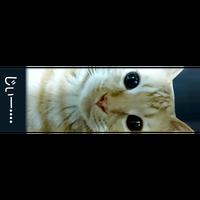 【猫妖怪図鑑】オリジナルマスキングテープ