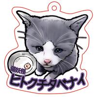 【猫妖怪図鑑】オリジナルアクリルチャーム