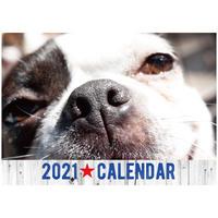 2021 アニプロオリジナル 犬 チャリティーカレンダー B4壁掛け