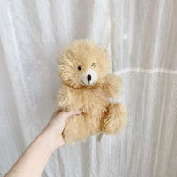used teddy bear