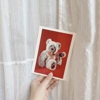 used teddy bear postcard