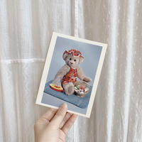 used teddy bear postcard