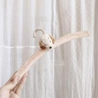 antique dog hunger
