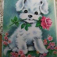犬のメッセージカード 封筒付き(未使用) c-2659