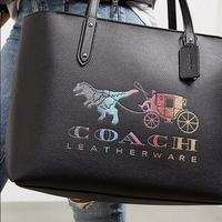 【送料無料】COACH コーチ トートバッグ Central With rexy And Carriage 69651 GM/BK【トートバッグ】