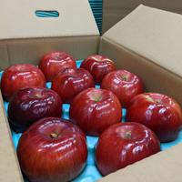 紅玉 3kg箱