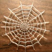 spiderweb/蜘蛛の巣