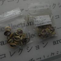 山岳民族 手芸用 no.  3-4mm 20粒  小さい子安貝ビーズ アーチコレクション archicollection  のコピー  のコピー  のコピー