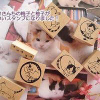 津久井さんちのうめとゆずスタンプ、廃番SALE!オール312円 | [Discontinued] Tsukui's cats Ume and Yuzu Stamps, all 312 JPY