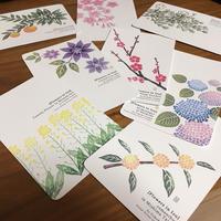 ポストカードセット:伊豆の花8種