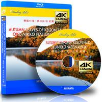 4Kカメラ映像【HealingBlueヒーリングブルー】華厳の滝・奥日光 紅葉
