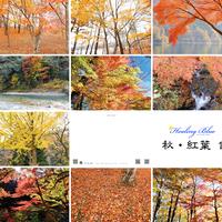 ポストカード(10種) Healing Blue ヒーリングブルー  秋•紅葉 -
