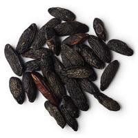 トンカビーンズAbs( Tonka Bean Absolute)エッセンシャルオイル 3mL