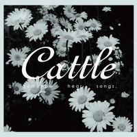 cattle【Somehow hear songs.】produced by 五味誠