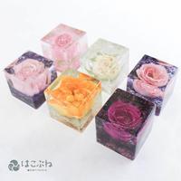 キュービックオルゴナイト薔薇 watanabe aki