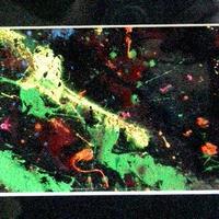 #5 注目の現代アート作家・今井アレクサンドル 油彩抽象画 2009年制作