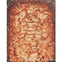 風見規文  / ダンゴムシが描かれた壁画片